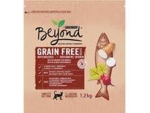 Pinso Beyond gat Grain Free salmo 1,2kg