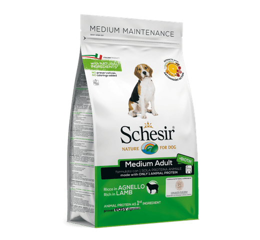 Pinso Schesir gos xai 1
