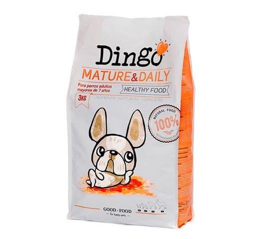 Pinso Dingonatura gos mature daily 1