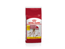 Pinso Royal Canin gos medium adult