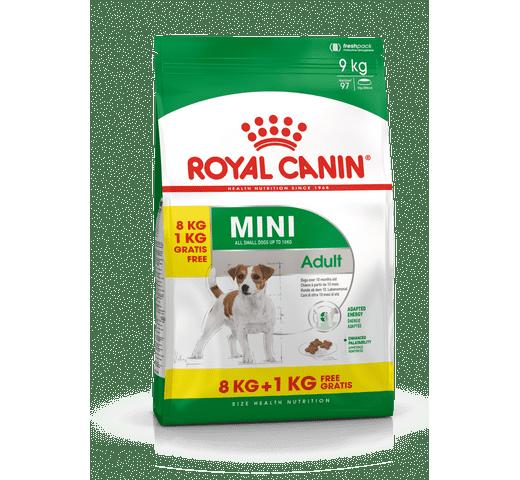 Pinso Royal Canin gos mini adult 1