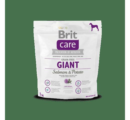 Pinso Brit Care giant grain free salmó i patata 1kg 1