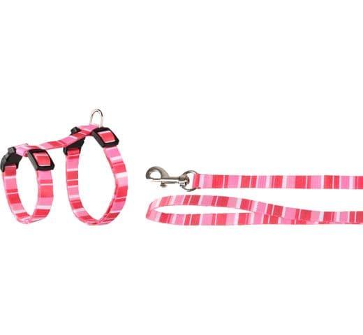 Arnés Flamingo gat + corretja alfry 10mm 2