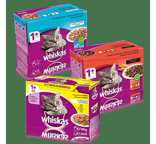 Aliment humit Whiskas gat selezione peix 12x100gr 1
