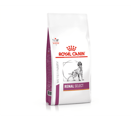 Pinso de dieta veterinària Royal Canin gos renal select 1