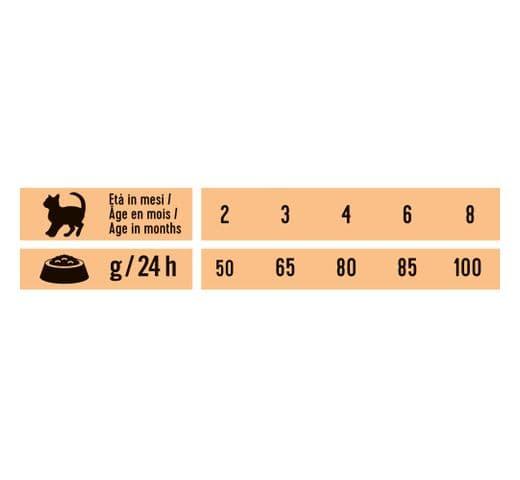 Pinso Schesir Natural Selection kitten ànec 3