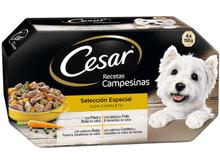 "Aliment humit Cesar ""salsa campesina"" terrines"