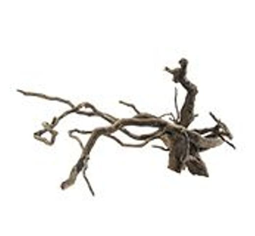 Decoració HOBBY arrel fosca fingerwood L 40-60cm 1