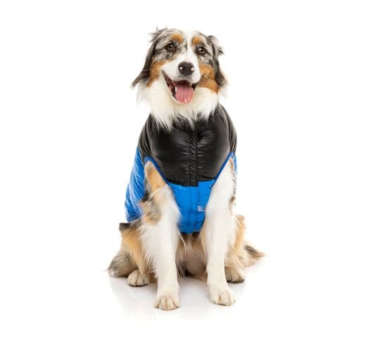 Abric Fuzzyard harlem puffer jacket blue 5