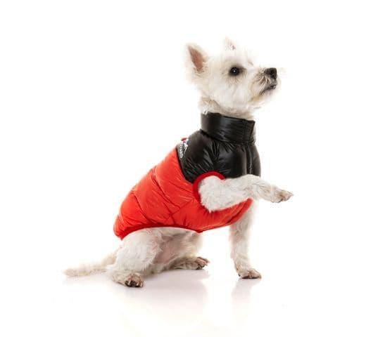 Abric Fuzzyard harlem puffer jacket red 4