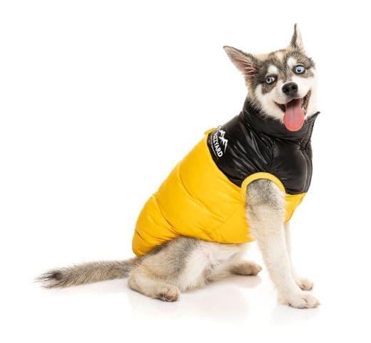 Abric Fuzzyard harlem puffer jacket yellow 4