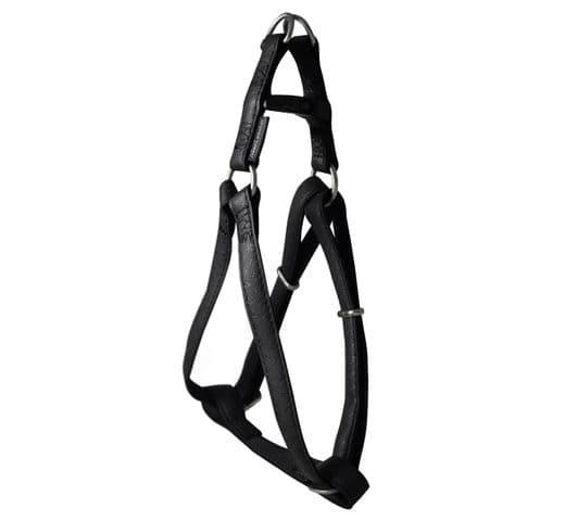 Arnés Mac Leather negre 10mmx25-40cm 1