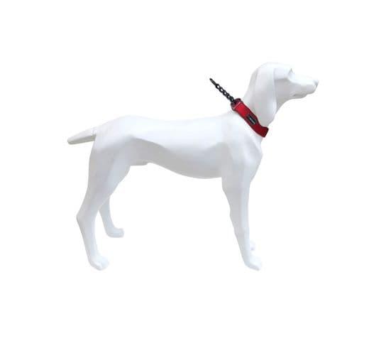 Collar Freedog Gun vermell 15x31-39 1