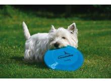 Joguina Freedog frisbee plàstic 20cm